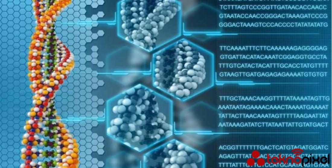 1 Gram DNA, 200 Milyon GB Dijital Veri Depolayabilir