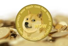 Photo of Dogecoin  Nedir? Nasıl Alnır?